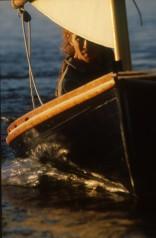 Melonseed skiff sailing on Lake Champlain